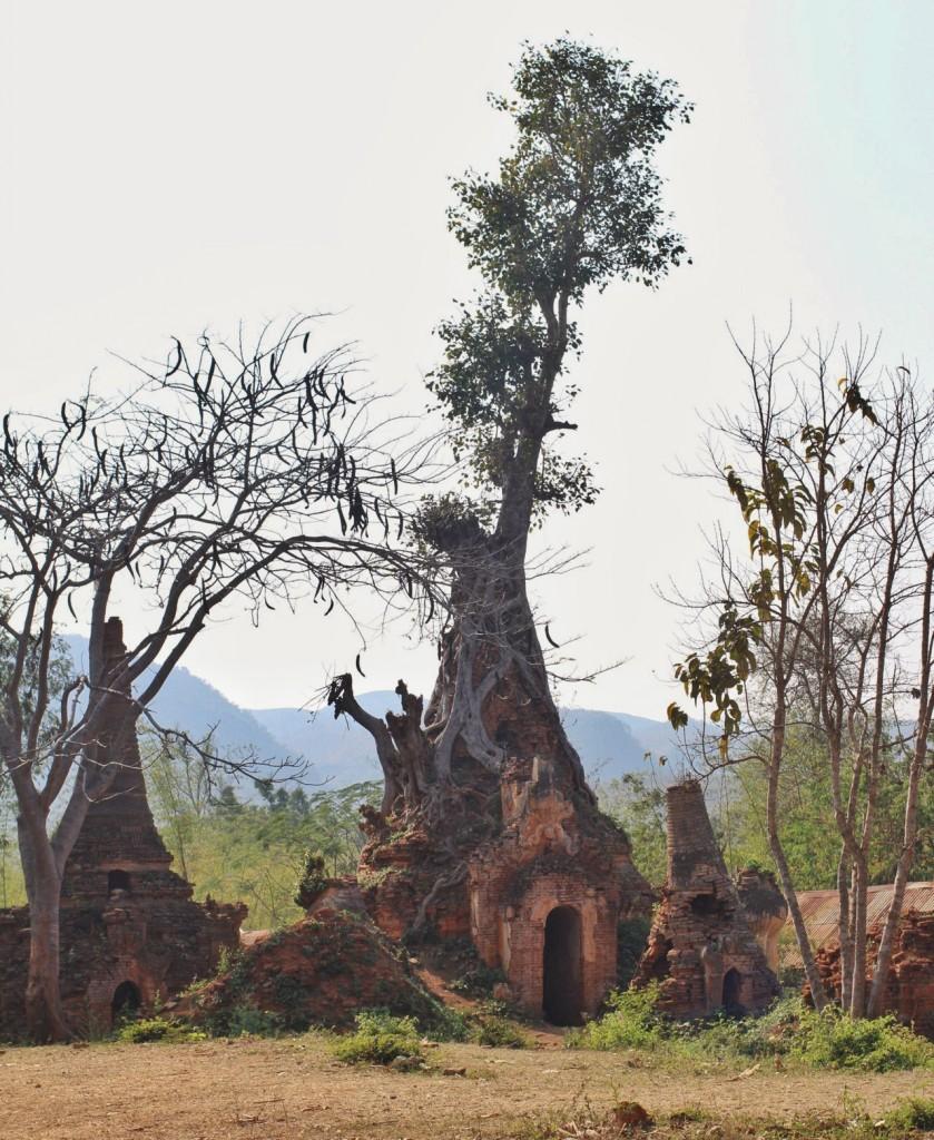 Inthein lac Inle Birmanie