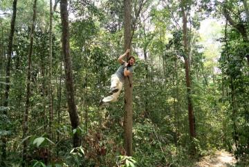 liane lors d'un trekking dans la jungle ratanakiri